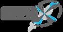 Simplex Logo Silver.png