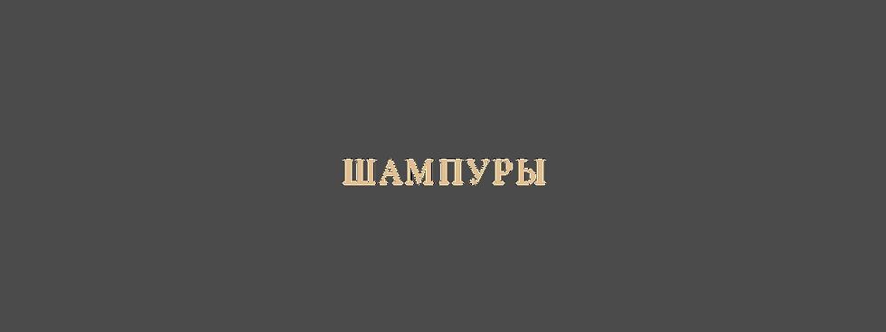 ШАМПУРЫ каталог.png