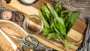 Jak zpracovat medvědí česnek? Připravte olej, pesto nebo máslo