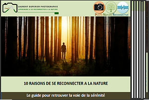 Image_e-book_10_raisons_de_se_reconnecte