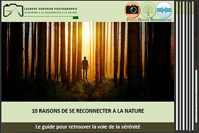Image_e-book_10_raisons_de_se_reconnecte