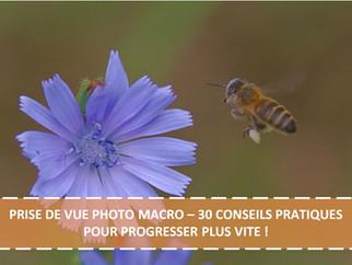 PRISE DE VUE PHOTO MACRO – 30 CONSEILS PRATIQUES POUR PROGRESSER PLUS VITE !