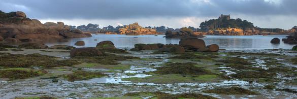 Ploumanach à marée basse