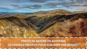 PHOTO DE NATURE EN AUTOMNE - 12 CONSEILS PRECIEUX POUR SUBLIMER VOS IMAGES !