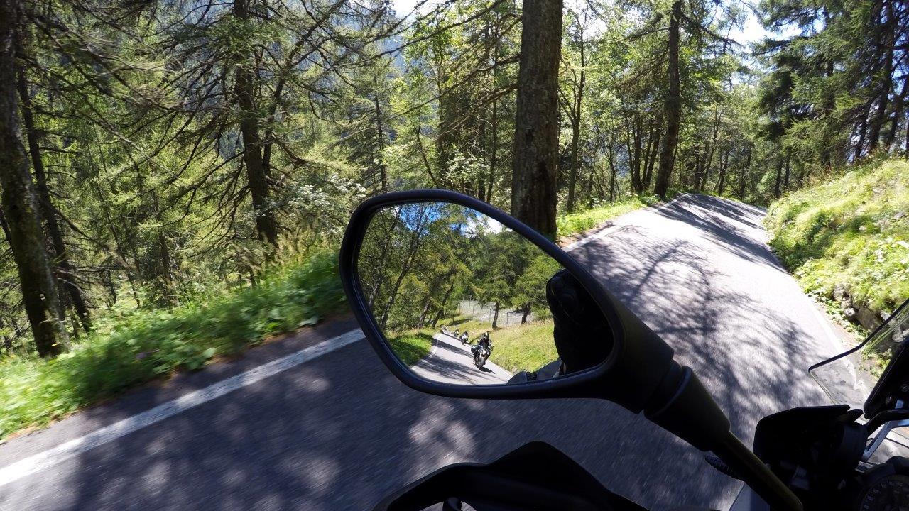 Garda_Forest