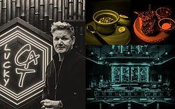 1200-Gordon-Ramsay-to-open-first-South-Florida-restaurant-in-Miami-Beach-705x439.jpeg