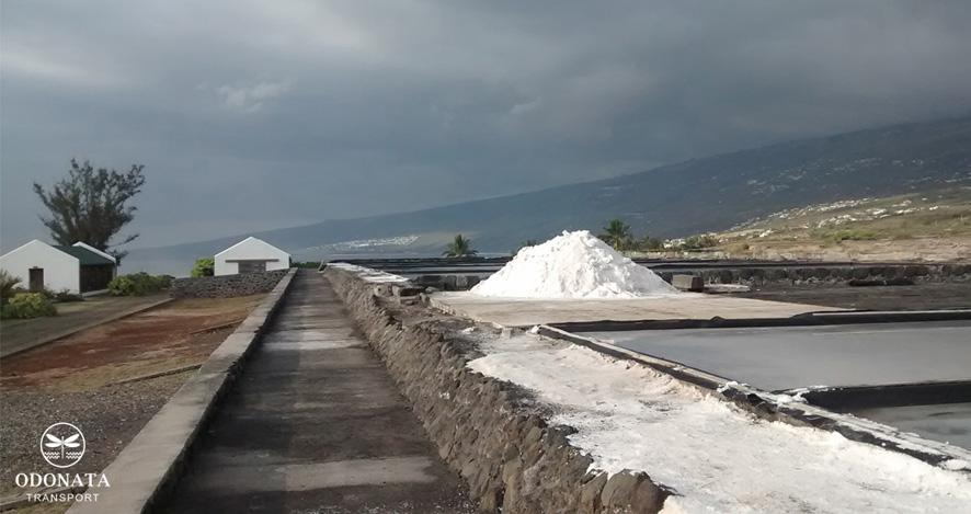 Production de sel à Saint Leu