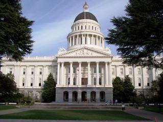 Senate Legislation Updates