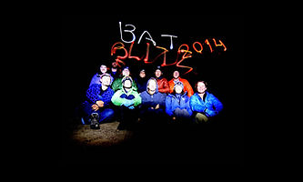 Bat_Blitz_Wider.jpg