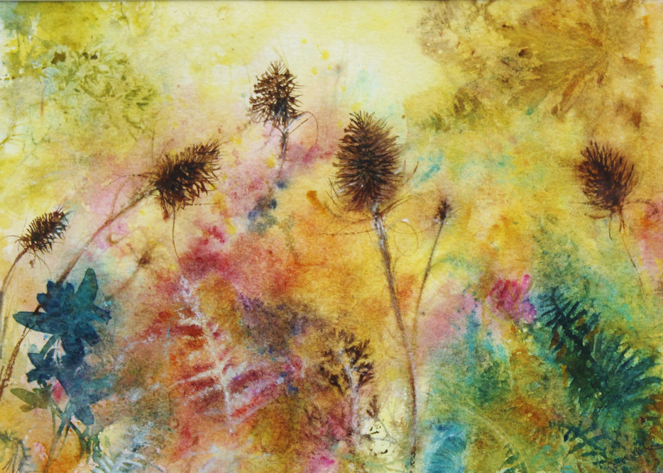 Hedgerow, spikey teasels and soft undergrowth Watercolour Carole Knight (2).jpg