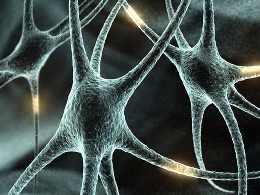 Neurociência: Mudando um padrão indesejado.