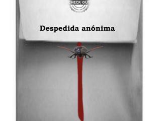 Despedida / Goodbye
