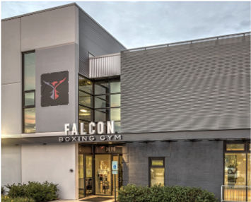acm-panel-falcon-boxing-gym.jpg