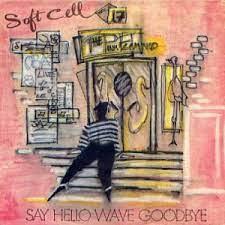 Say Hello, Wave Goodbye