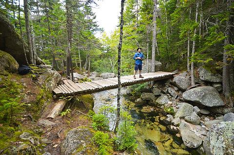 Appalachian Trail 2.jpg