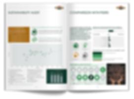 WWebsite Brochure Thumbnails_v01.png