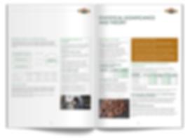WWebsite Brochure Thumbnails_v023.png