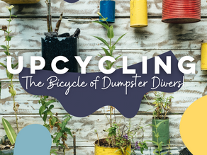 Upcycling! The Bicycle of Dumpster Divers!