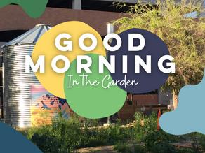 A Good Morning in the Garden