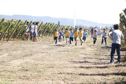 Campeonato Escolar de Cross Country