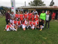 Campeonato Provincial de Fútbol