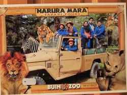 Viaje al Buin Zoo