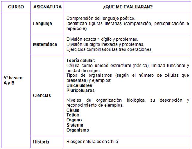 12_Contenidos_5°_Básico.PNG