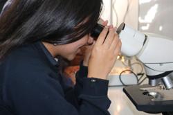 Laboratorio Móvil en nuestro Liceo