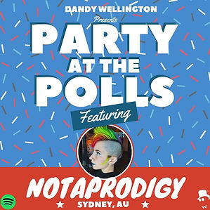 Party at the Polls Notaprodigy.jpg