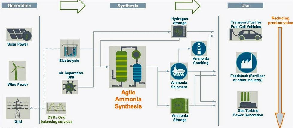 Ammonialifecycle_edited.jpg