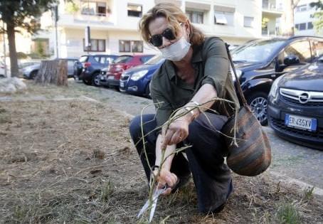 Roma, Monica Guerritore con il comitato cittadino per ripulire piazza Jacini - la Repubblica 26-6-20