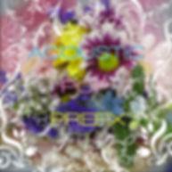 APP3色文字小.jpg