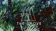 The grove pic copy.jpg