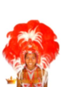 back feathers, samba costumes history, B