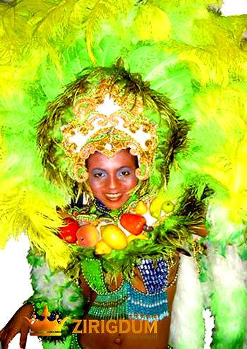 feathered headdress, headdress carnival,