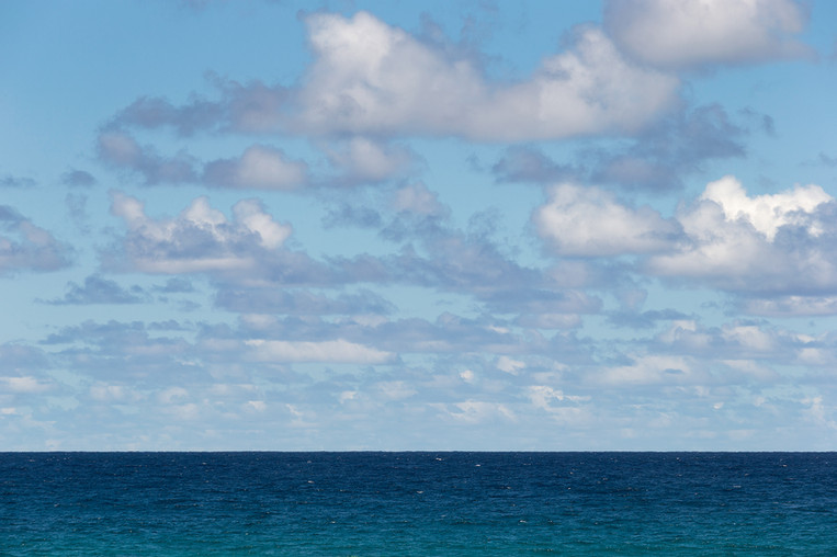 COTTON SEA