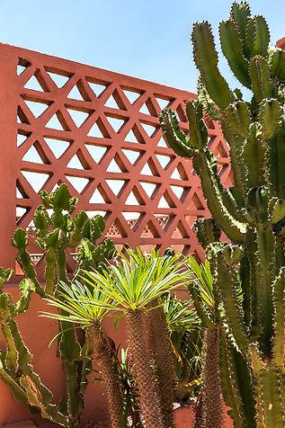Marrakech_0169.jpg