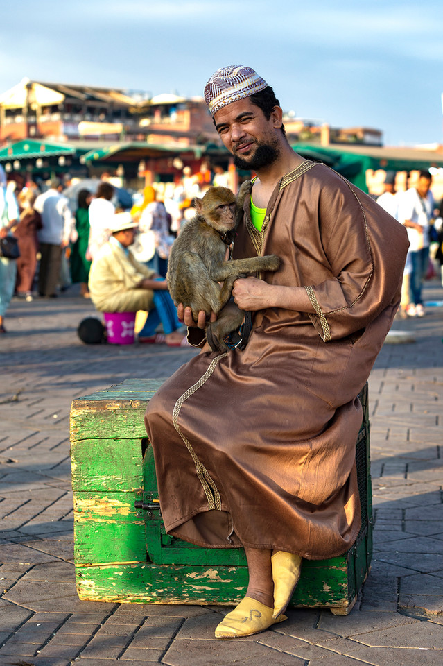 THE MOROCCAN AND THE MONKEY
