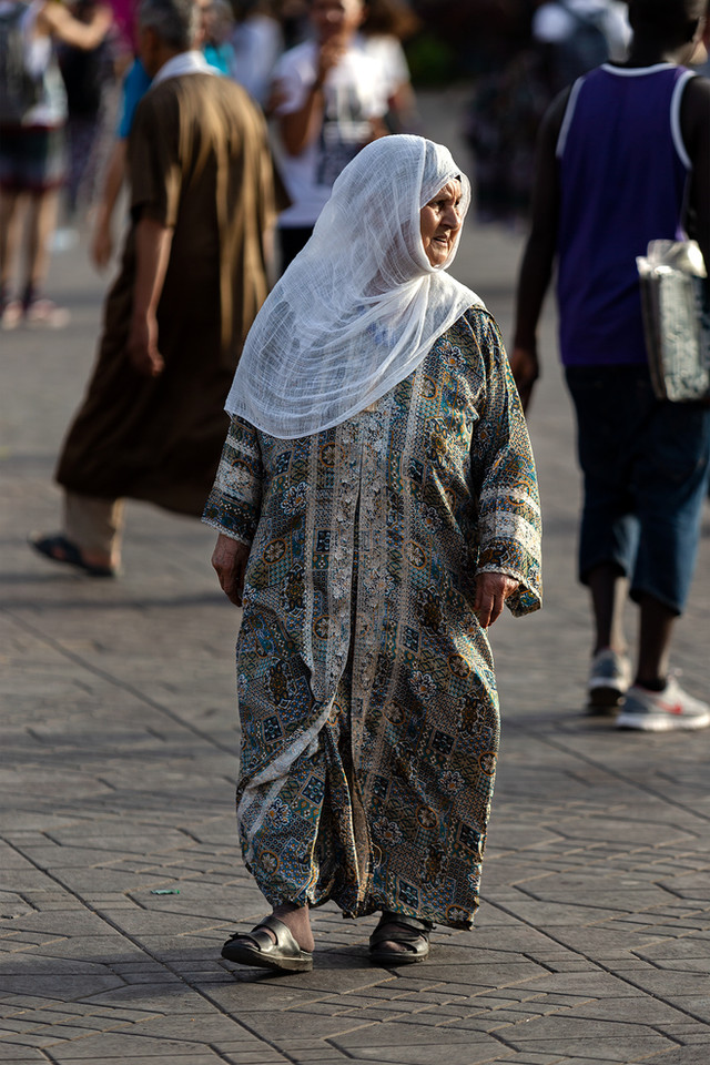 THE LADY WITH THE WITH VEIL