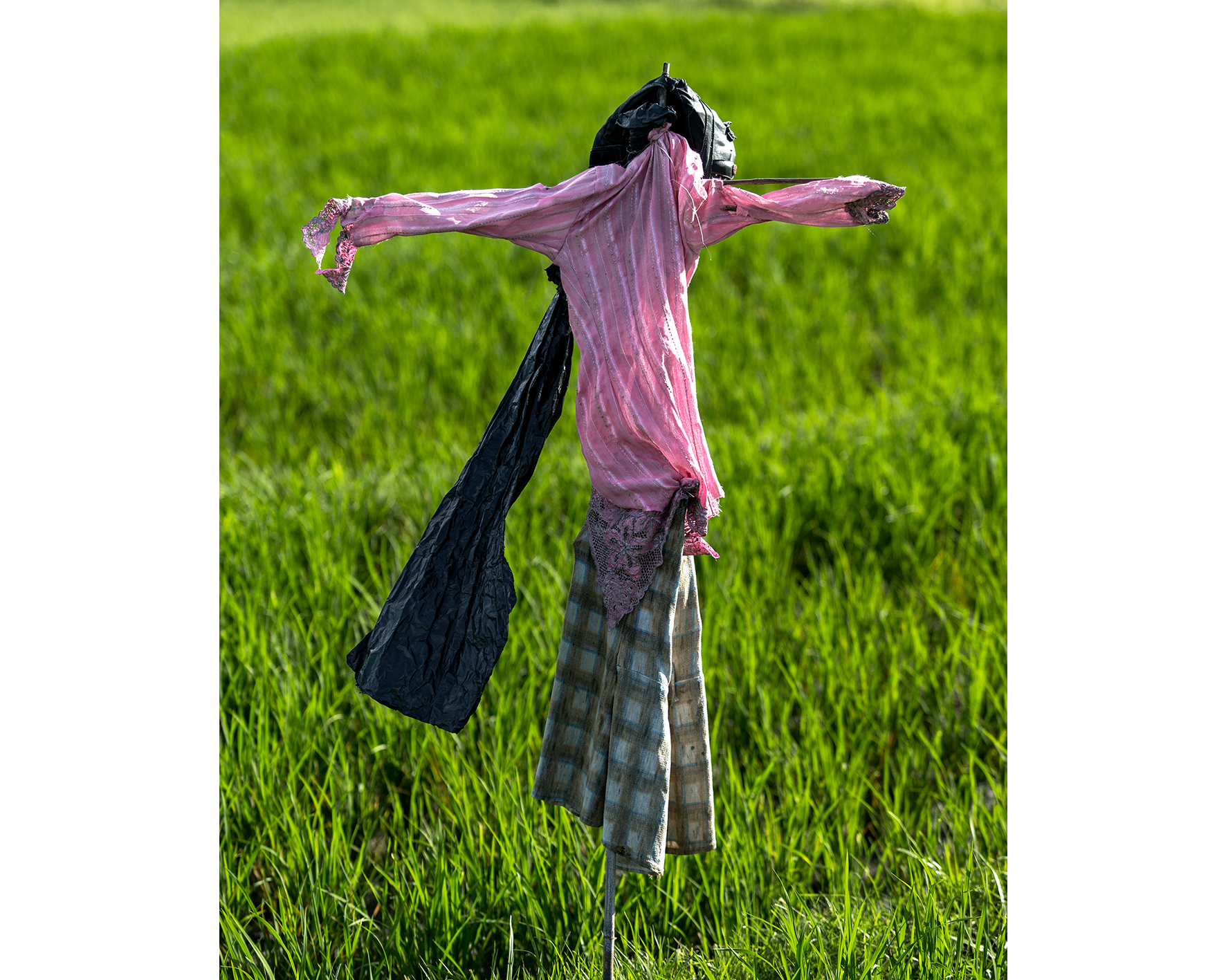 Scarecrows-Best-Contemporary-Photography