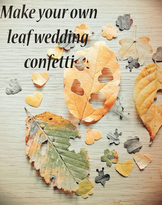Biodegradable confetti made from Autumn leaves.
