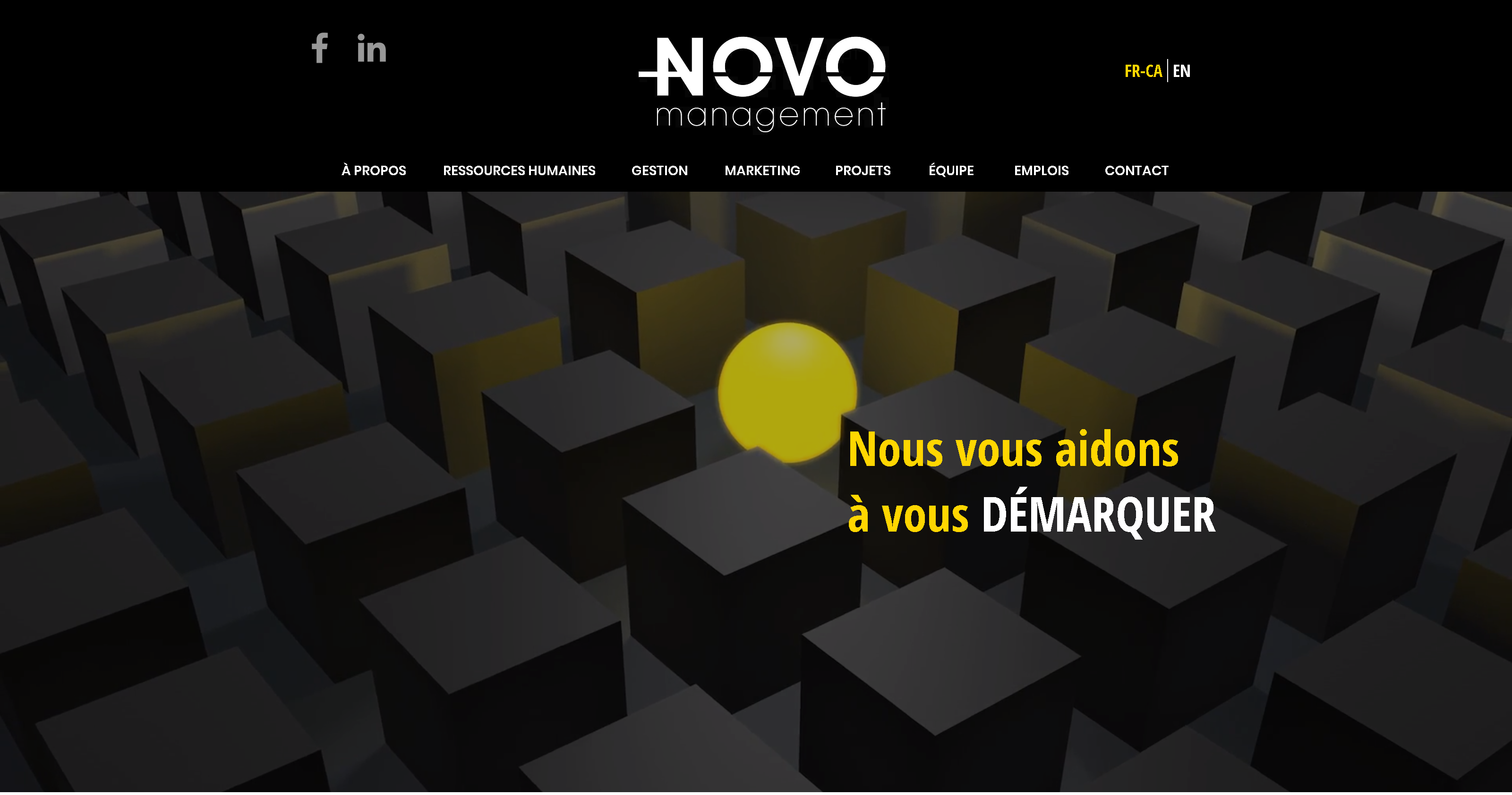 Site Web Novo Management
