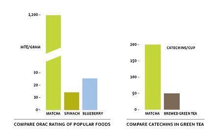 chart of catechins.jpg