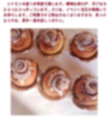 シナモンロール.jpg