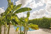 piscine-séminaire-événements-profesionne