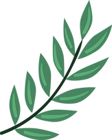 Plant%20%20%20%20%20%20%20_edited.png