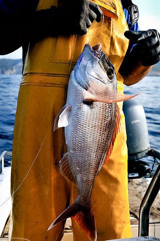 Fishermen in Ibiza©David Arnoldi