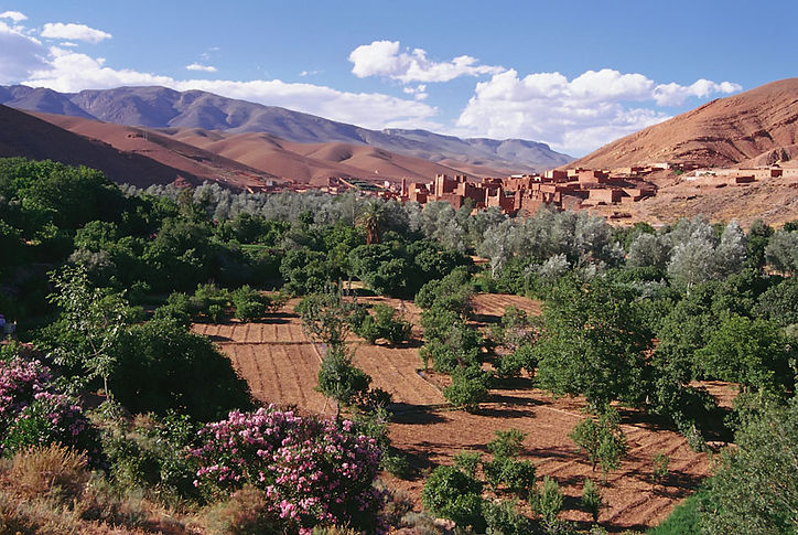 Boulman Dades Town Boumalne Dades is a town in Ouarzazate Province, located at the edge of a plateau desert. ©David Arnoldi