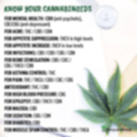 Uses of Cannabinoids.jpg