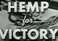 Mary Jane's Guide: Hemp Has FINALLY Arrived!